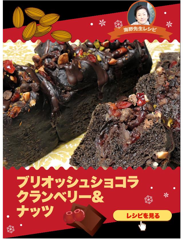 ブリオッシュショコラ クランベリー&ナッツ