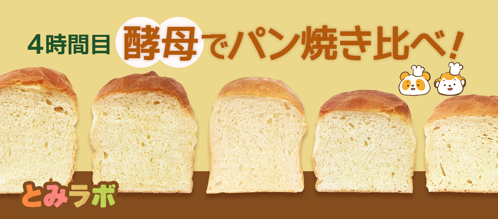とみらぼ・酵母でパン焼き比べ