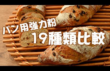 パン用強力粉19種類比較